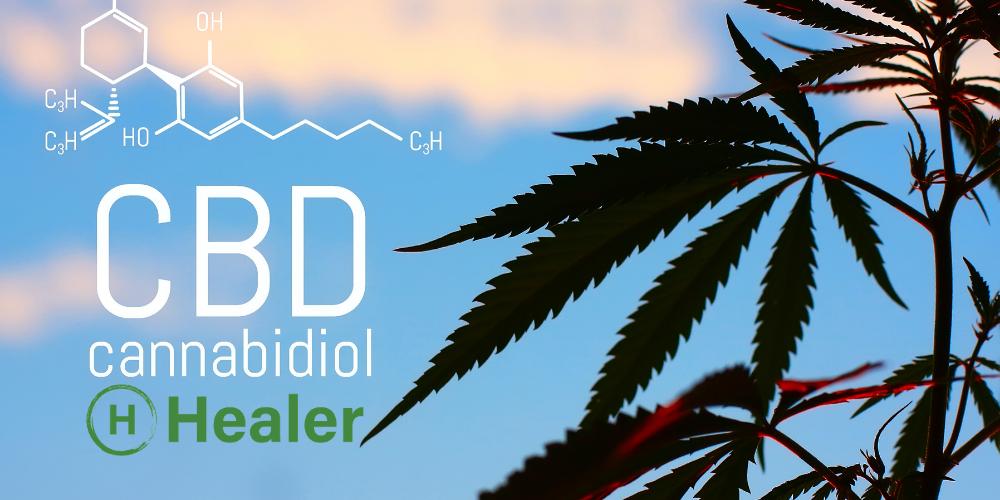 healer_cbd_benefits_how_to_use_cbd