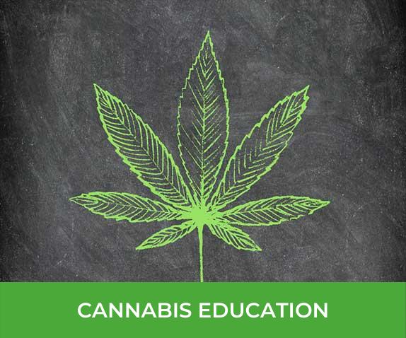 healer_cannabis_education_learn_about_cannabis_101