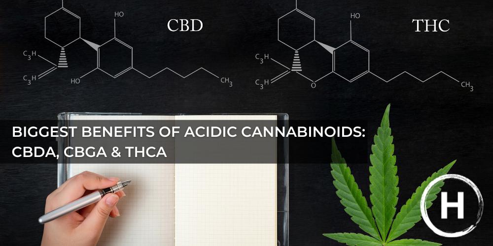 Healer_benefits_of_acidic_cannabinoids_cbda_cbga_thca