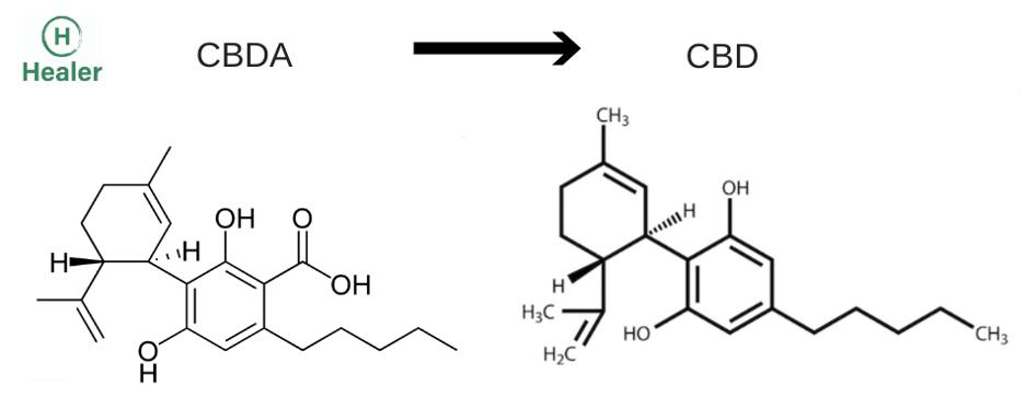 cbda_vs_cbd_molecule