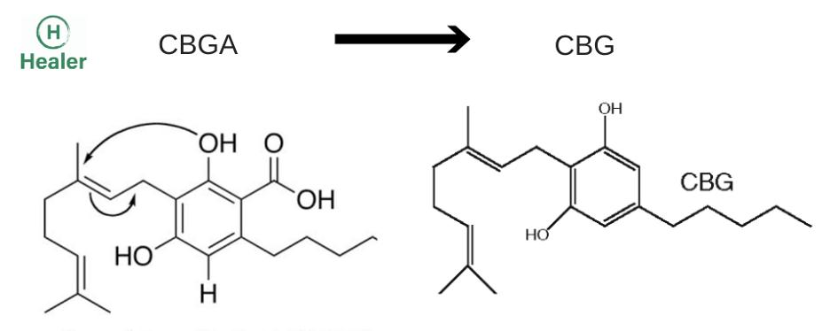cbga_vs_cbg_molecule